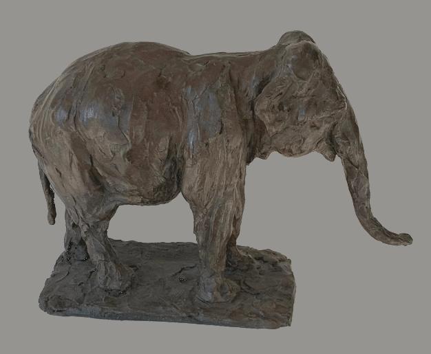 Éléphant - Roch Vandromme
