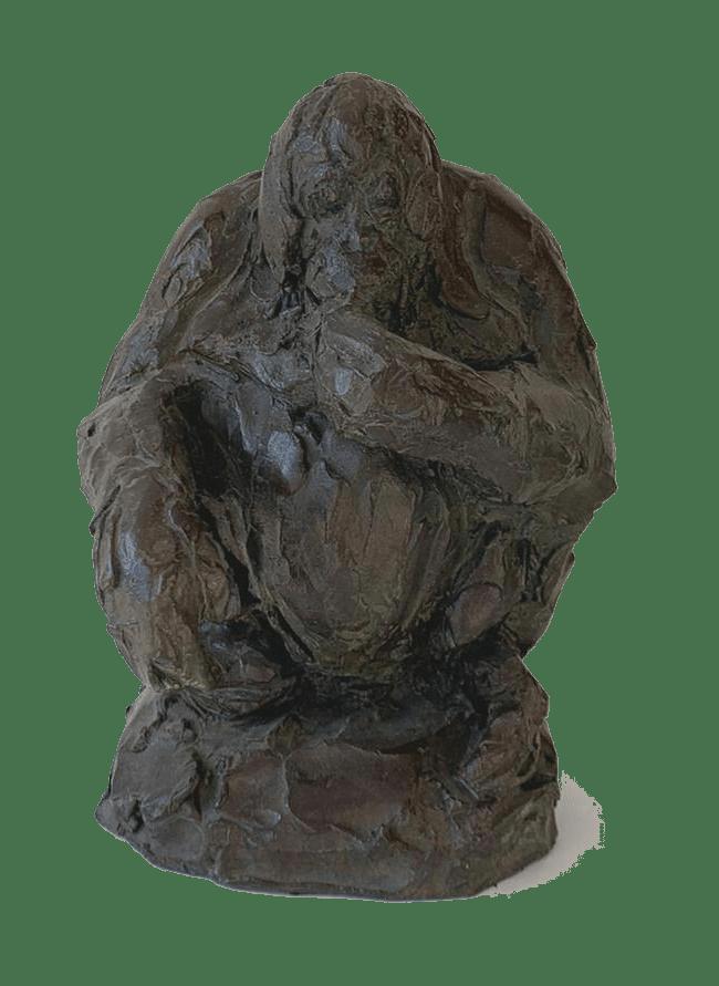 Orang-outan - Roch Vandromme-min